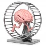 mozg-na-karuzeli
